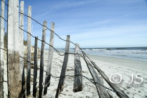 HH-beach (1 of 1)-2