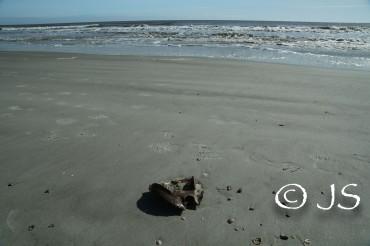 HH-beach (1 of 1)